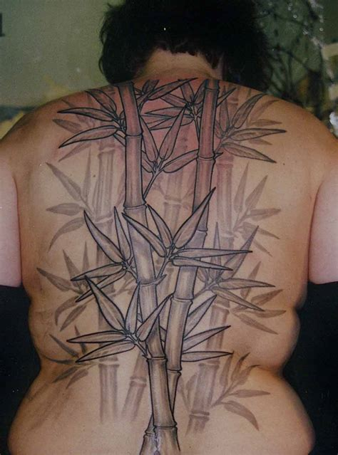 bamboo tattoo bamboo valance photo