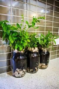 jar herb garden planter