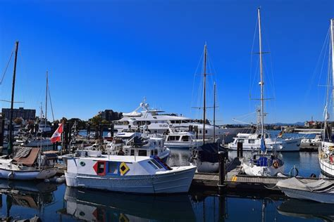 yacht elisa luxury bc real estate superyacht elisa spotted in victoria