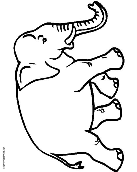 circus elephants coloring pages free coloring pages of circus elephants