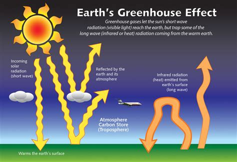 diagram of greenhouse effect part 4 ecological relationships among organisms