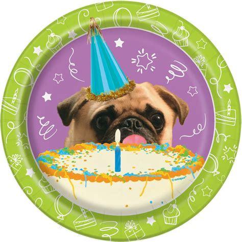 puppy birthday supplies best 25 puppy supplies ideas on puppy doggie birthday