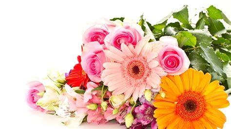 flower for s day hintavertailu 196 idille kukkia netist 228 mit 228 maksaa