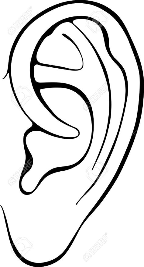 coloring page ear image gallery human ear clip art