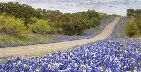 what county is hill in hill country vacation travel guide and tour information