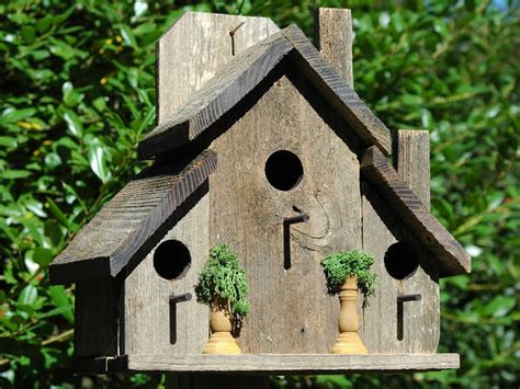 bird houses wilderness series wsbh157 ole country store ii bird house