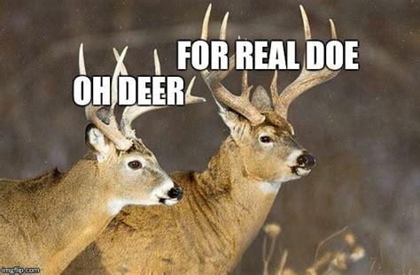 Deer Memes - deer puns imgflip