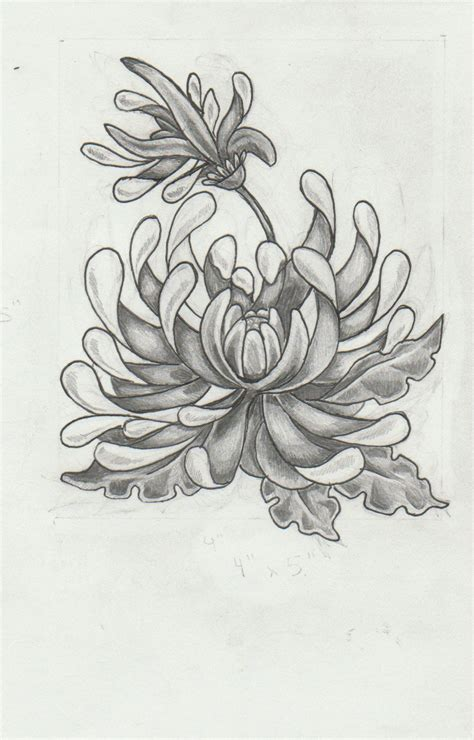 chrysanthemum tattoo design chrysanthemum design by mashamanya on deviantart