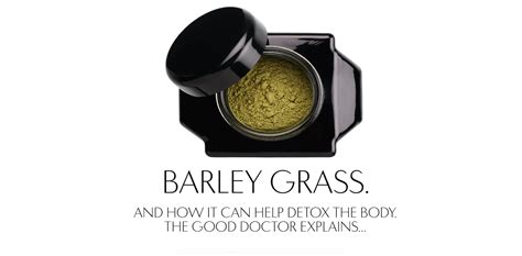 Detox Cs Europe by Barley Grass Detox 101 Welleco Au