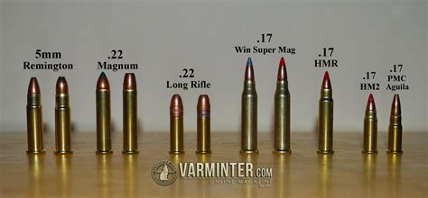 17 hmr 22 magnum images 6 best images of rifle cartridge size comparison chart