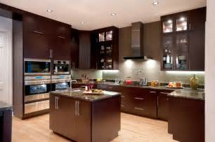 Houzz Modern Kitchen Cabinets Bars