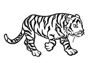 what color is a tiger pictures to colour tigers