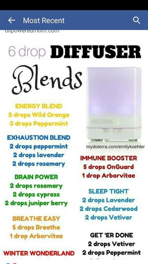 Diffuer Recipes For Detox by 292 Best Essential Oils Images On Aromatherapy