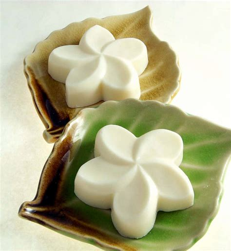 Handmade In Hawaii - plumeria soap 2 frangipani soap hawaiian gift by doublebrush