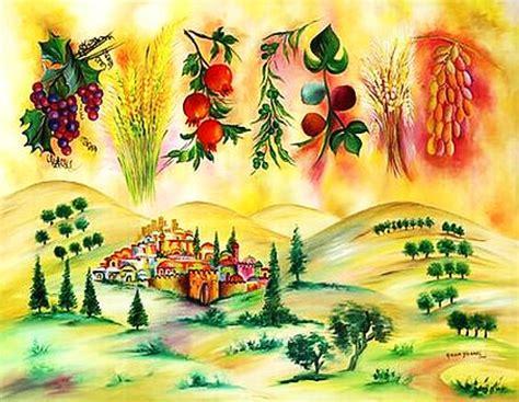 7 fruits of israel l etoile de mazal a marseille