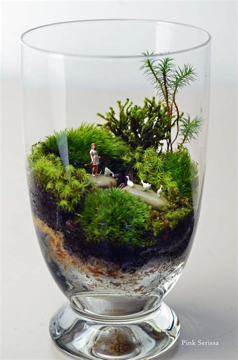 moss terrarium with girl and geese in miniature apothecary jar girls glasses and apothecaries
