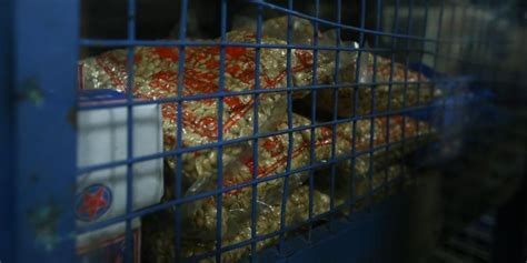 Kacang Kulit Ting Ting Enak Dan Murah mengintip isi kerangkeng makanan presiden ri untuk perjalanan udara kompas