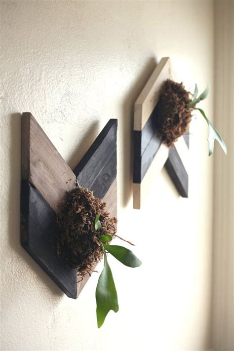 fresh natural decorations staghorn fern home design interior