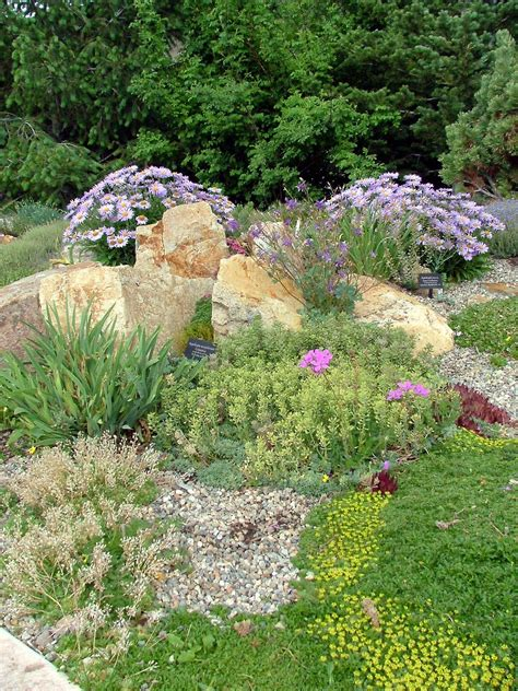 Betty Ford Alpine Gardens by Betty Ford Alpine Gardens