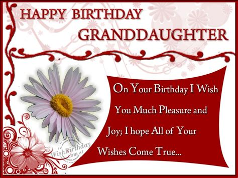 birthday wishes  grand daughter wishes  pictures  guy