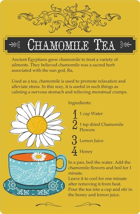 Chamomile Tea During Detox by The World S Catalog Of Ideas