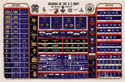 united states navy ranks mi united states navy 2 jpg 2048 215 1348 fashion