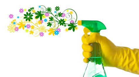 spring cleanup professional cleaning services in hertfordshire london
