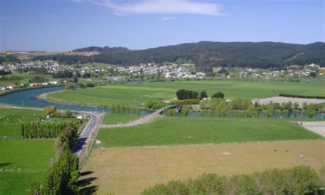 new zealand town with many is looking for new