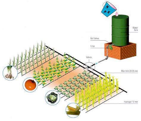 design and layout of drip irrigation system tropfbew sserung f r den weinbau gem sebau obstbau bew