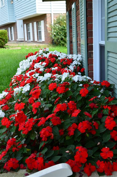 flower beds  front  house ideas  decorathing