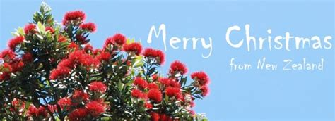 images of christmas nz merry christmas from new zealand photo of auckland new