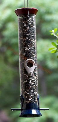 1000 images about birds feeders food mix on pinterest