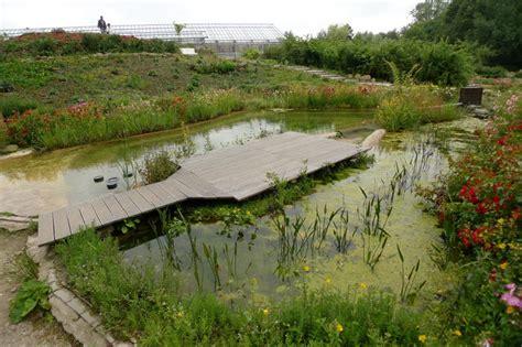natura gart schwimmteiche planung und bau die naturagart spezial