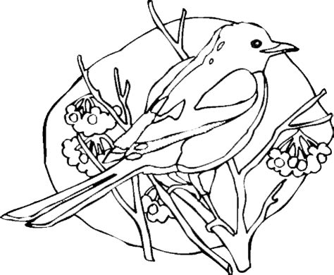 free coloring pages of songbirds birds in tree coloring pages