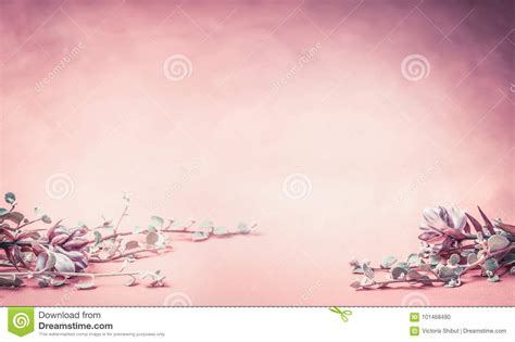 Wedding Banner Border by Pink Floral Background With Flowers And Leaves Banner Or