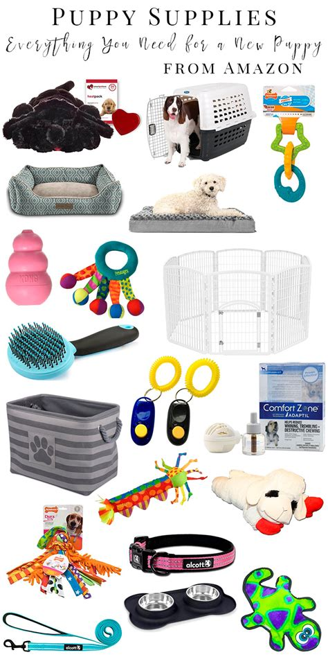 puppy supplies what you need for a new puppy before they