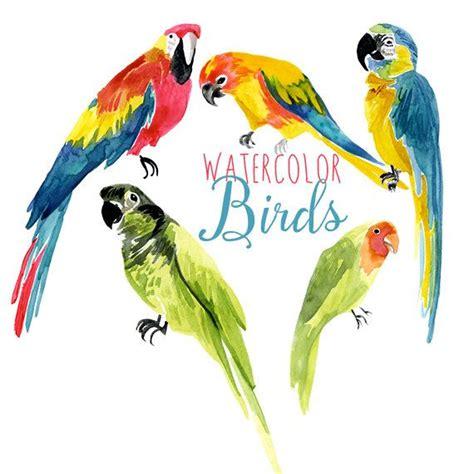 best 25 artificial birds ideas on pinterest tropical tropical birds names www pixshark com images galleries
