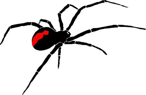 spider tattoo png jarrett better agricultural and turf machinery
