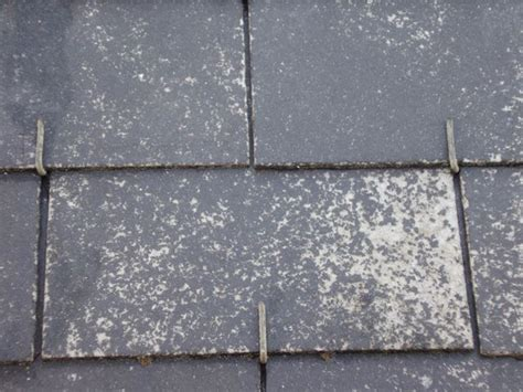 tuile fibro ciment amiante peinture toiture fibro ciment peinture de toiture fibro