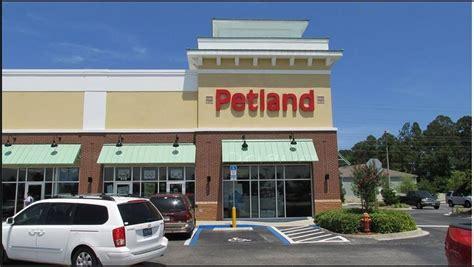puppy store jacksonville fl petland 50 photos pet stores 13740 blvd southside jacksonville fl