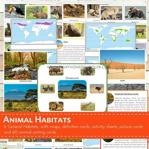 printable animal habitat cards layers of the earth free printable the pinay homeschooler