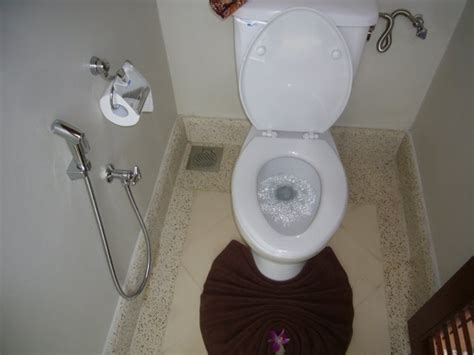Toilet That Sprays Your Bottom Europeans Of Oh Should I Install Bidet In My New Home