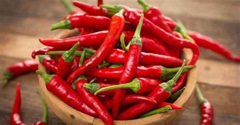 alimentos vasodilatadores benef 237 cios da vasodilata 231 227 o e alimentos vasodilatadores