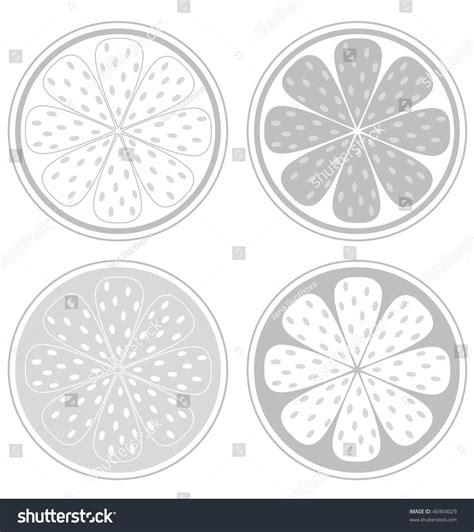 design element citrus citrus fruit slices isolated on white stock vector