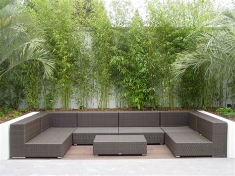 modern backyard furniture contemporary gardens