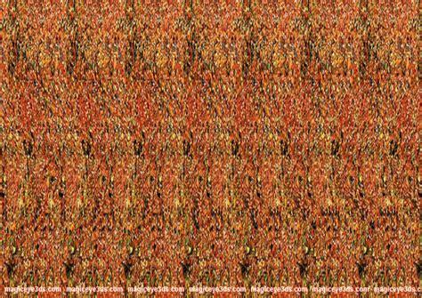 imagenes que se ven en 3d single image stereogram nadinechicken