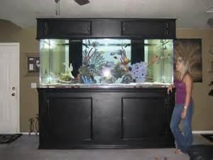 2013 ? giant aquariums