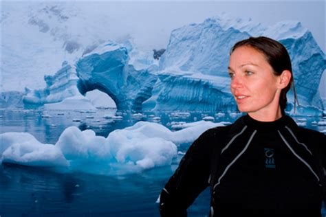 Home Design Pictures Gallery by Miss Scuba Antarctica Expedition Photo Gallery