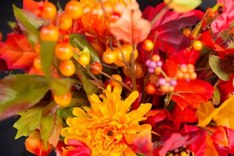 Thanksgiving Flowers by Free Photo Fall Flowers Thanksgiving Flowers Free