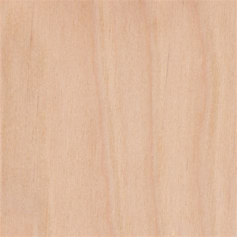 birch color downy birch the wood database lumber identification